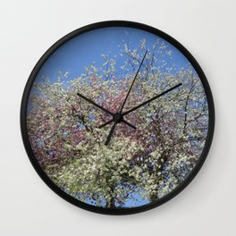 Pink and White Blossom - Blue Sky Wall Clock