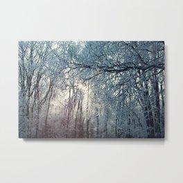 Winter (2) Metal Print