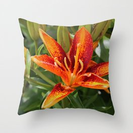On Wild Chickory Blvd Throw Pillow