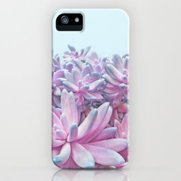 Sweet Succulents iPhone Case