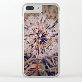 Dew On Dandelion Clear iPhone Case
