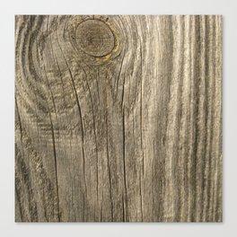 Texture #1 Wood Canvas Print