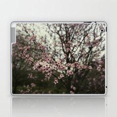 Pink spring blossom Laptop & iPad Skin