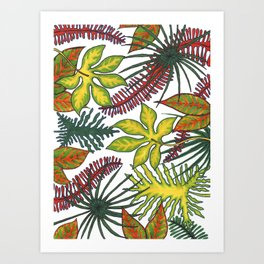 Florida Flora Art Print