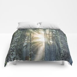 Filtered Light Comforters