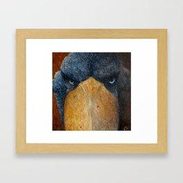 Shoebill (Balaeniceps rex) Framed Art Print