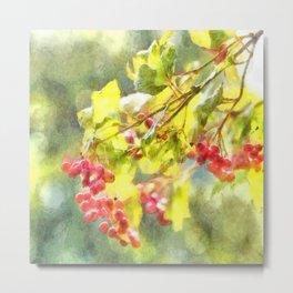 Winter Berries Watercolor Metal Print