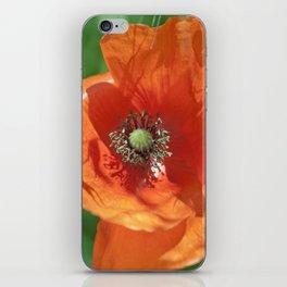 Red poppy flower iPhone Skin