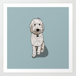 Labradoodle Illustration Blue Background Art Print