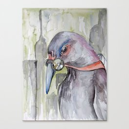 Urban Decay Pigeon Canvas Print