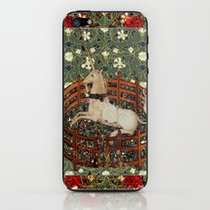 Captive Unicorn iPhone & iPod Skin
