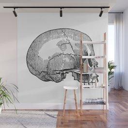 Skull 12 Wall Mural
