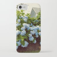 cape cod iPhone & iPod Cases featuring Cape Cod Hydrangeas by Joyce Vincent