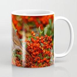 Hermit Thrush on the Scarlet Firethorn Coffee Mug