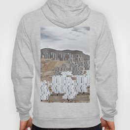 Spliced City Hoody