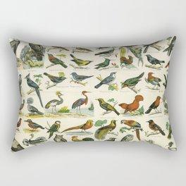 Natural History Birds Poster - sooo many! Rectangular Pillow