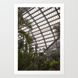 Conserve, Reflect Art Print