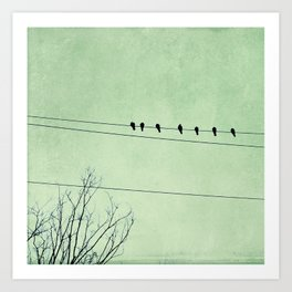 Birds on a Wire, no. 7 Art Print