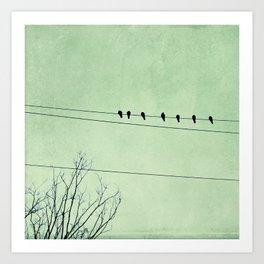 Birds on a Wire, no. 7 Art Print