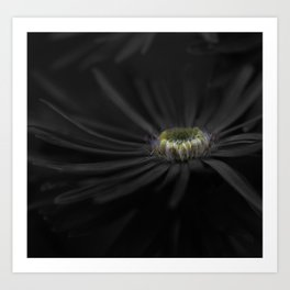 A touch of color. Art Print