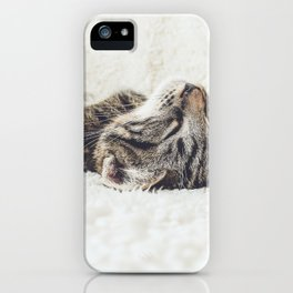 Funny cute cat current mood hipster kawaii kitten animal lover photograph iPhone Case