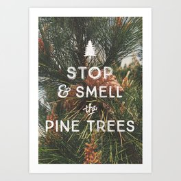 STOP AND SMELL THE PINE TREES Art Print