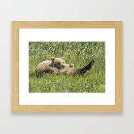 My Foot's So Pretty, Oh So Pretty - Bear Cubs, No. 2 Framed Art Print
