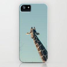 Giraffe  Slim Case iPhone (5, 5s)