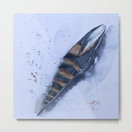 Sea snail - Mitra zonata Metal Print