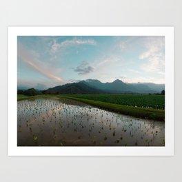 Hawaii New 18x24 Art Print