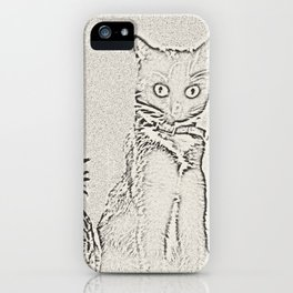 The Cat and the Pineapple iPhone Case