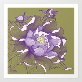 Peony flower Art Print