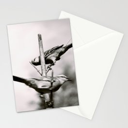 Birds - Black and White Stationery Cards