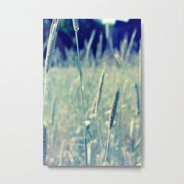 Meadow & Weed Metal Print