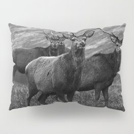 The four stags on the loch b/w Pillow Sham