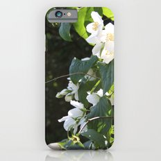 Spring Glow iPhone 6s Slim Case