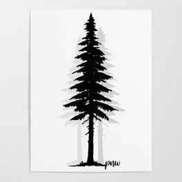 Pacific North West Tree Poster