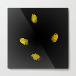 Chickens CAN fly! Metal Print