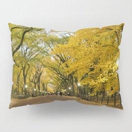 Central Park New York City Pillow Sham