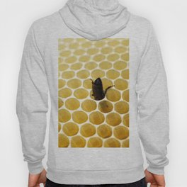 Bee in the honeycomb Hoody