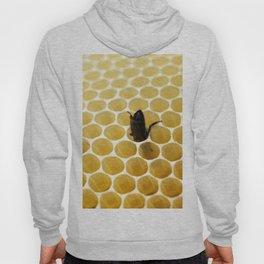 Bee in the honeycomb Hoody