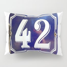 The Meaning of Life Pillow Sham