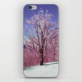 Winter Maple iPhone Skin