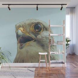 Common Kestrel Portrait Beak Wide Open (Falco tinnunculus) European kestrel. Wall Mural
