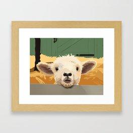 Sweet Lamb in the Barnyard Framed Art Print
