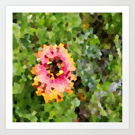 Barberton Daisy Crystallized Art Print
