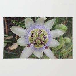 Passion Flower Blossom Rug