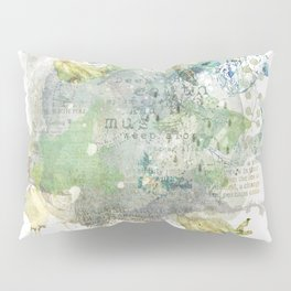Earth Day Pillow Sham
