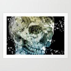 skull birds 02 Art Print