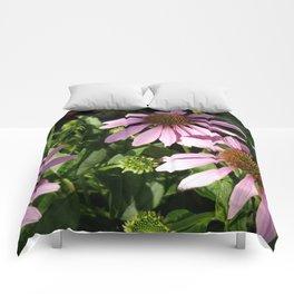 Purple Cone Flowers Comforters